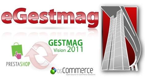 eGestmag pour Gestmag